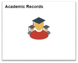 View of the Academic Records tile.