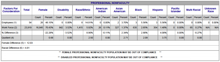Chart showing Professional NonFaculty Racial/Ethnic breakdown